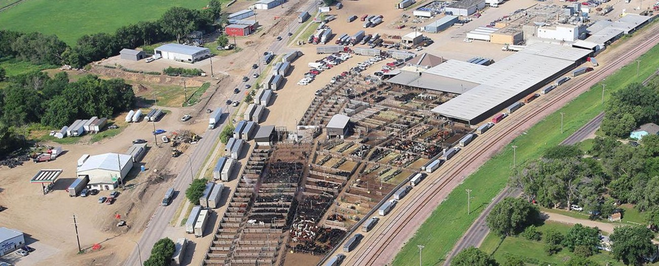 Stockmen's Livestock